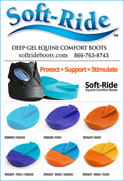 Soft Ride Equine Comfort Boots