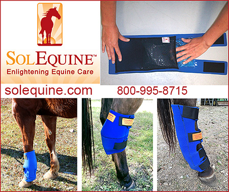 solEquine Cold Therapy for Horses
