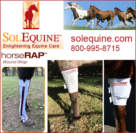 solEquine Horse Wound Wrap