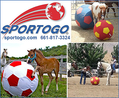 Horse Toys from Sportogo