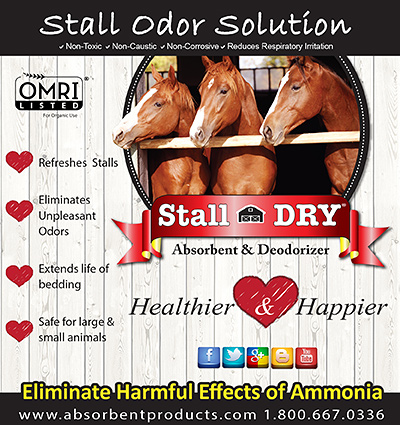 Stall Dry Absorbant Deodorizer
