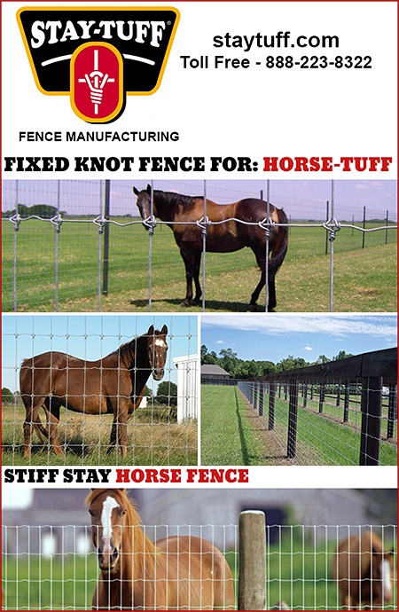 Wire Fence for Horses