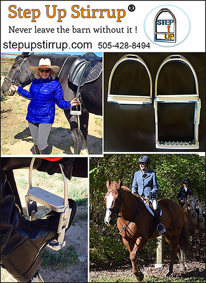 Step Up Stirrup Confidence Builder for Horse Riders