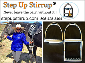 Step Up Stirrup