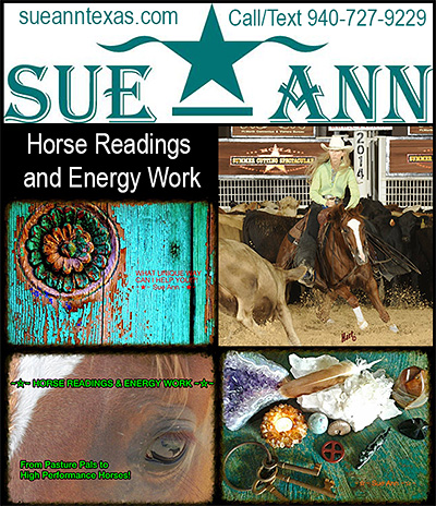 Horse Readings and Energy Work by Sue Ann!