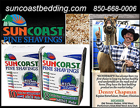 SUNCOAST Horse Bedding