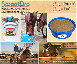 SweetPro Horse Health Supplements