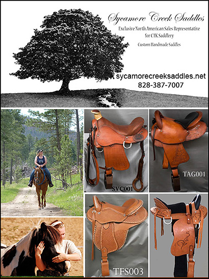 Sycamore Creek Saddles