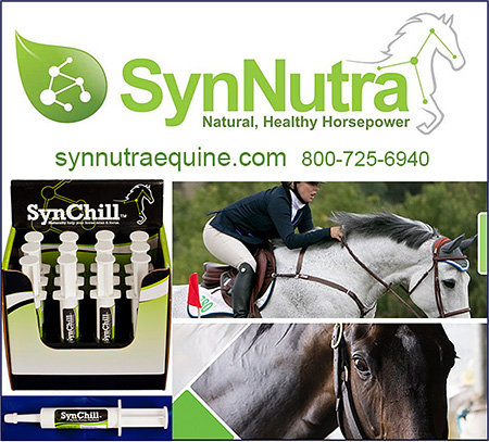 SynNutra Horse Pre-Performance Supplement