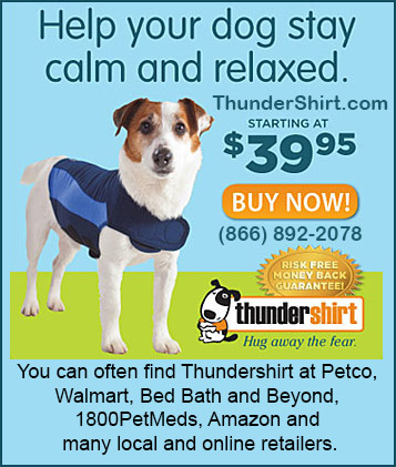 thundershirt protection for dogs!