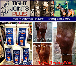 Horse Joint Supplement by Tight Joints Plus