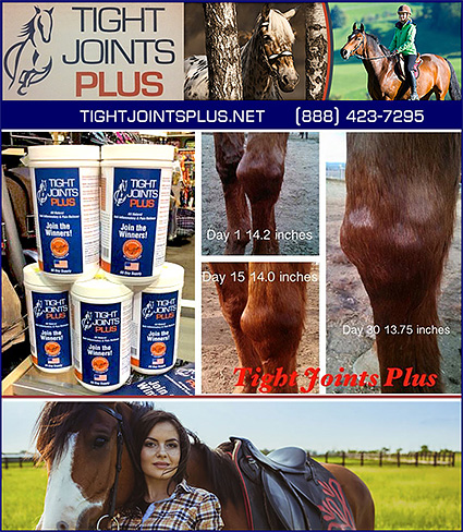 Tight Joints Plus Horse Supplements for Joints and Arthritis