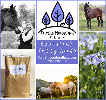 Turtle Mountain Flax for Horses