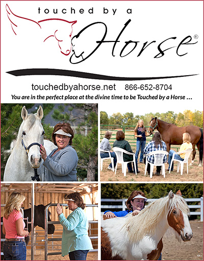 Touched by a Horse Equine Coaching Certification