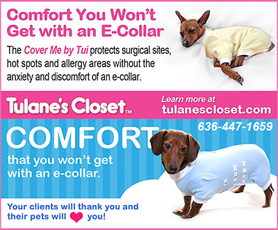 Tulanes Closet Cover Me E-Collar Alternative