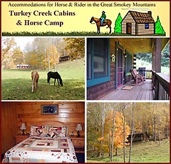 Turkey Creek Cabins