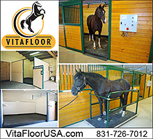 Vita Floor Vibration Therapy for Horses!