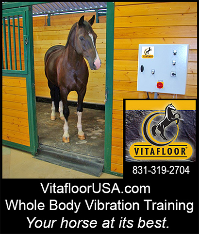 VitafloorUSA Horse Vibration Training