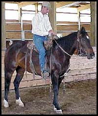 lateral flexion excercise for horses.