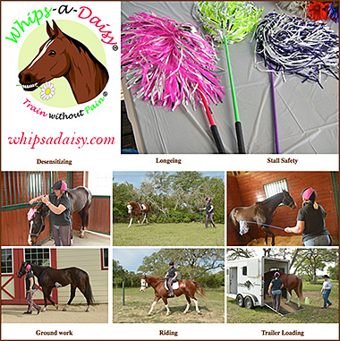 Whips a Daisy Gentle Horse Training Whip