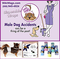 WikiWags help prevent dog accidents!