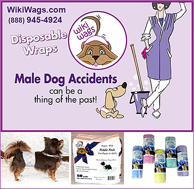 Wiki Wags Disposable Wraps Prevent Dog Accidents!