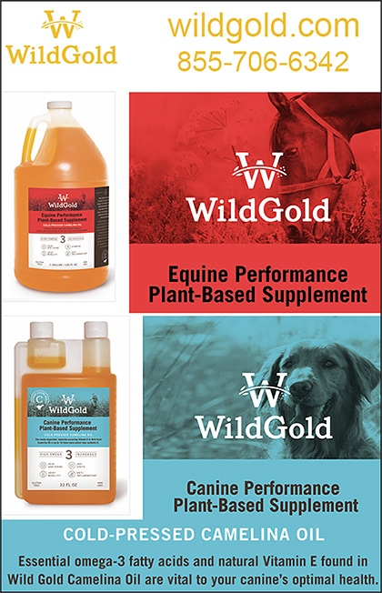 Wild Gold Camelina Oil for Horses and Dogs.