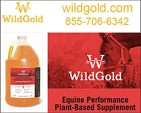 WildGold Omega Supplement for Horses