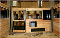 Horse Stall Ventilation