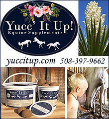 Yucc It Up Horse Health Supplements